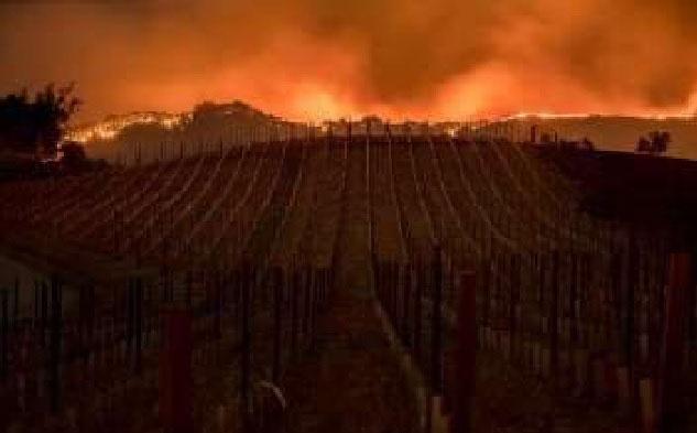 2017 Sonoma County Fire